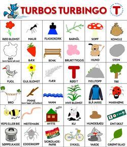 Turbos turbingo