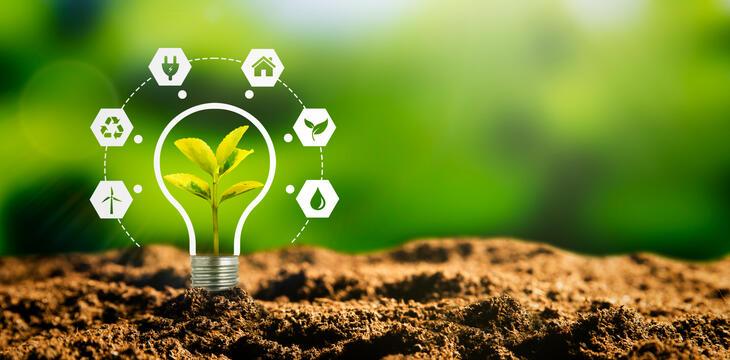 Grønn fremtid - Innlandet